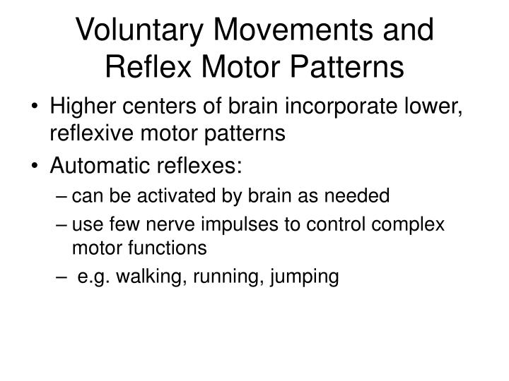 Voluntary Movements and