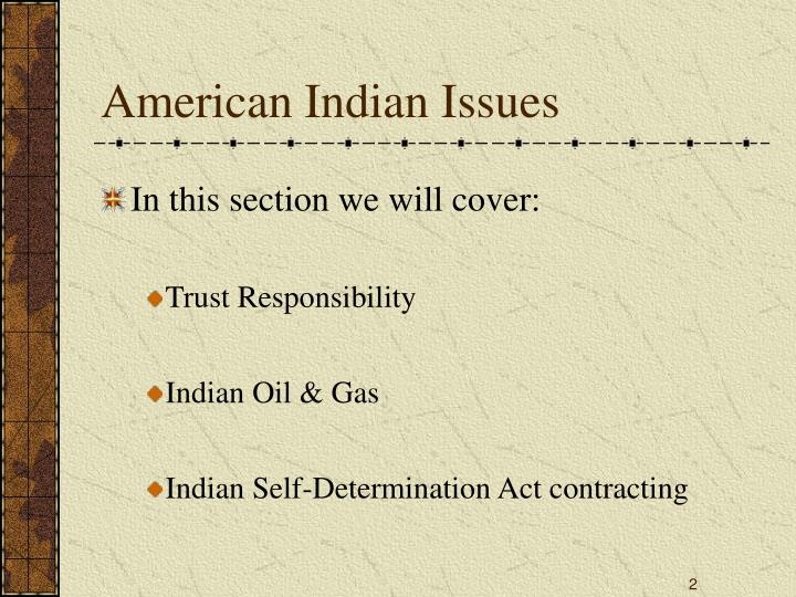 American Indian Issues