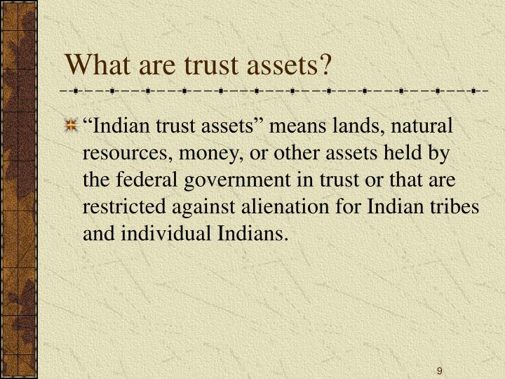 What are trust assets?