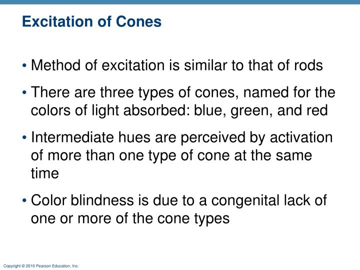 Excitation of Cones