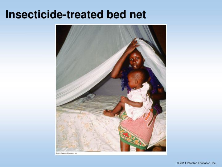 Insecticide-treated bed net