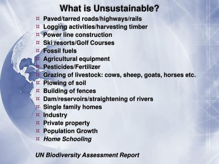What is Unsustainable?
