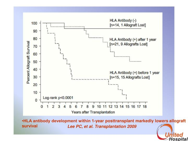 Treatment options and strategies for antibody mediated rejection after renal transplantation