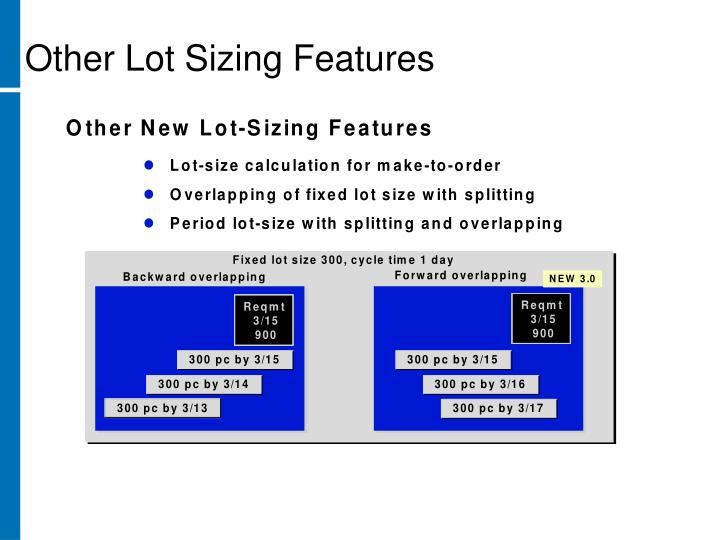 Other Lot Sizing Features