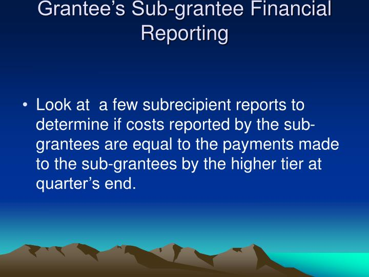 Grantee's Sub-grantee Financial Reporting