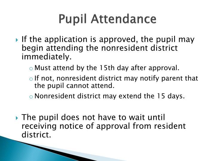 Pupil Attendance