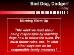 bad dog dodger friday