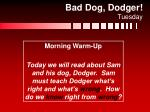 bad dog dodger tuesday1