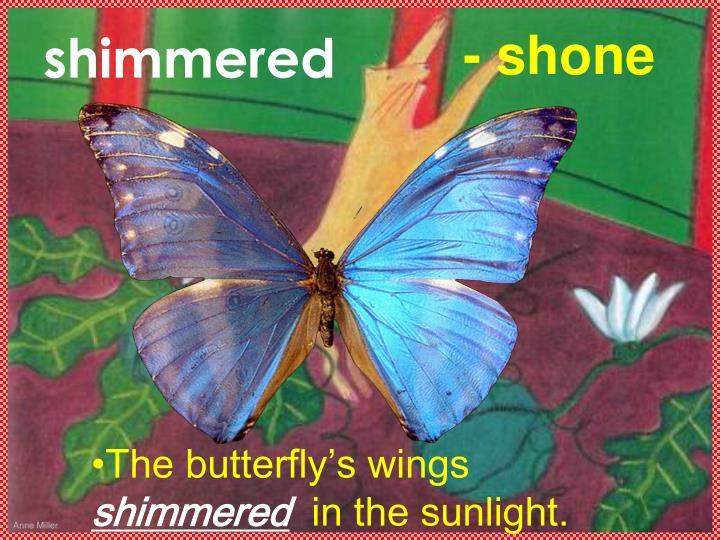 shimmered