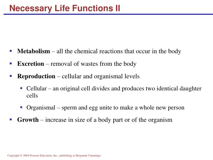 Necessary Life Functions II