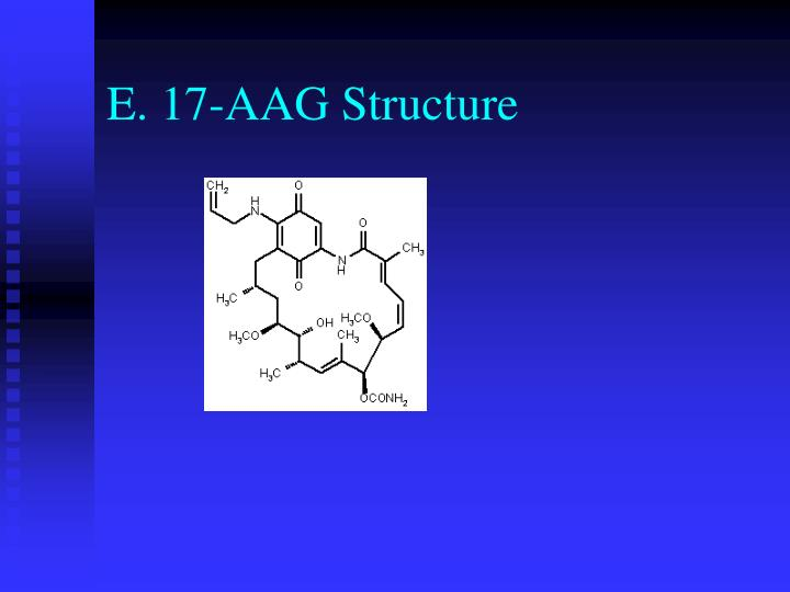 E. 17-AAG Structure