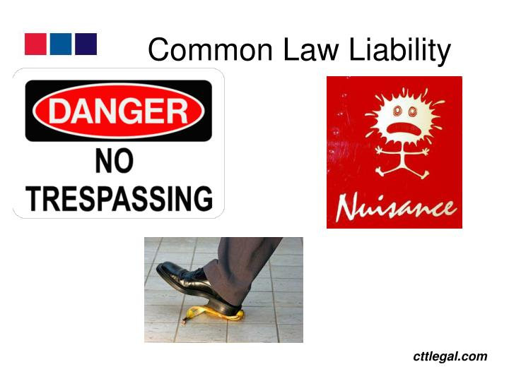 Common Law Liability