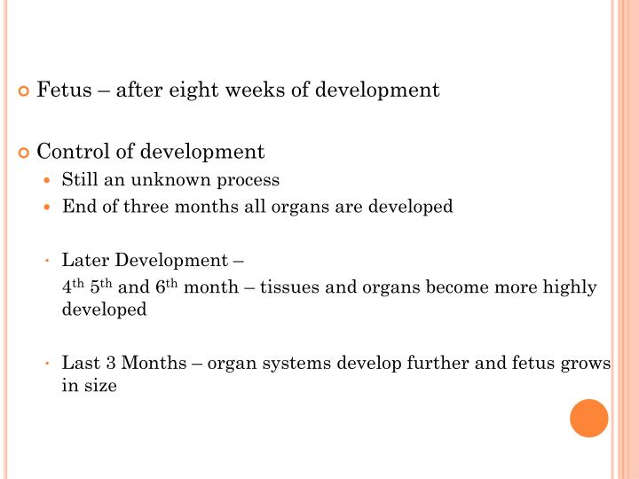 Fetus – after eight weeks of development