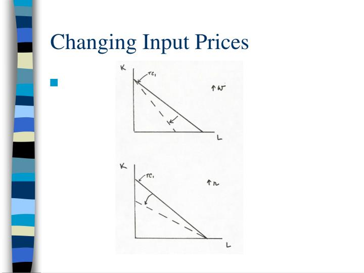 Changing Input Prices