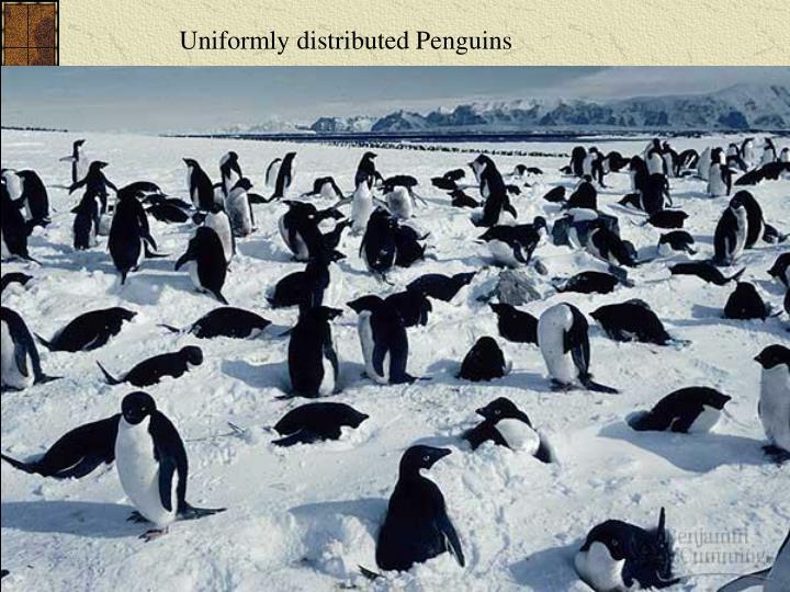 Uniformly distributed Penguins