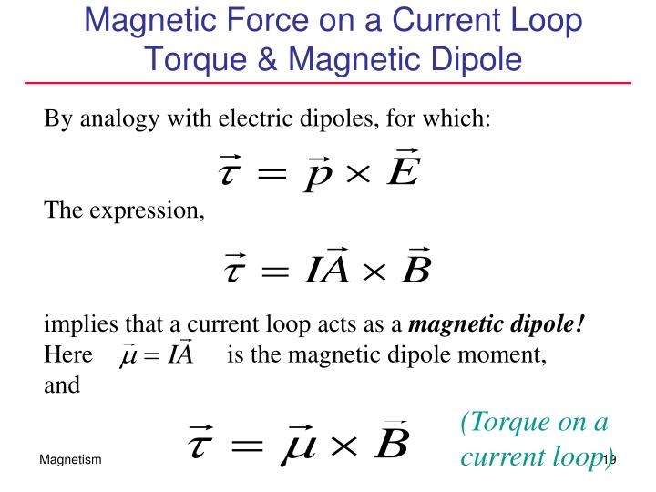 Magnetic Force on a Current Loop
