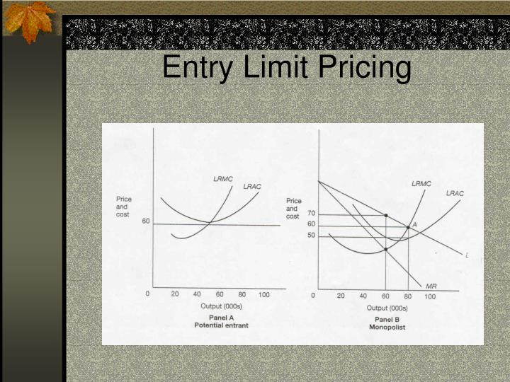 Entry Limit Pricing