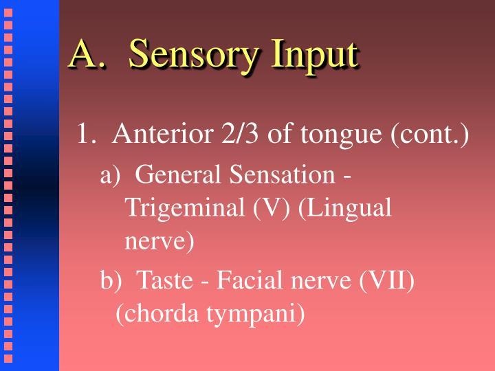 A.  Sensory Input