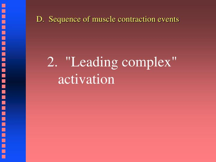 D.  Sequence of muscle contraction events