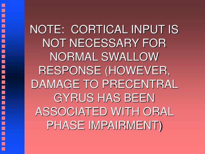 NOTE:  CORTICAL INPUT IS NOT NECESSARY FOR NORMAL SWALLOW RESPONSE (HOWEVER, DAMAGE TO PRECENTRAL GYRUS HAS BEEN ASSOCIATED WITH ORAL PHASE IMPAIRMENT)