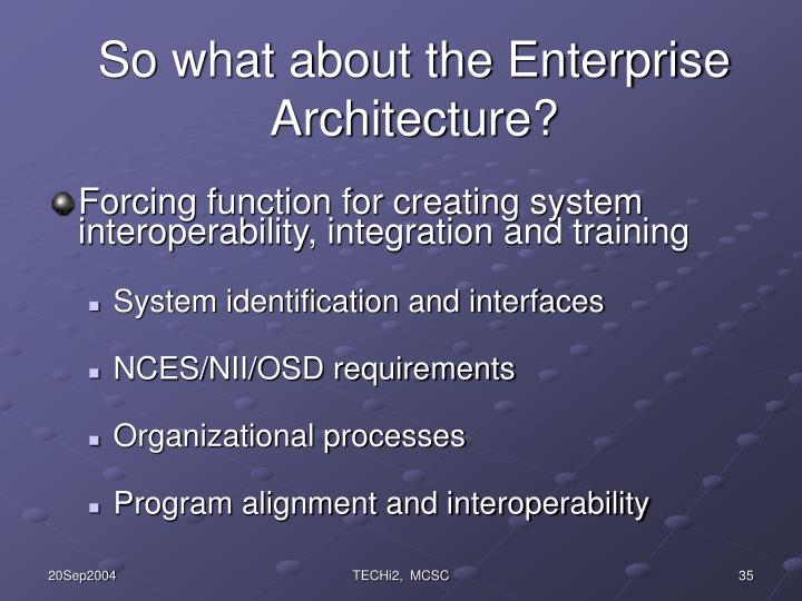 So what about the Enterprise Architecture?