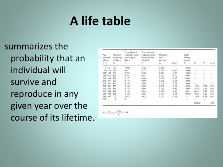 A life table