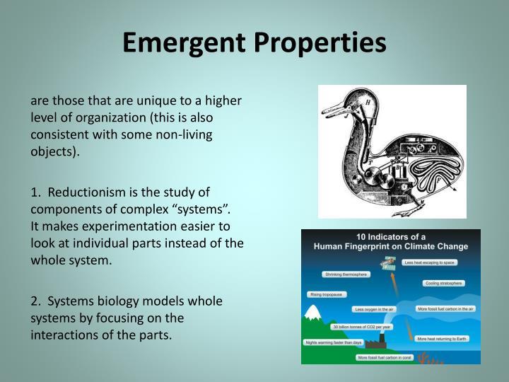 Emergent Properties