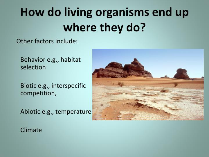 How do living organisms end up where they do?