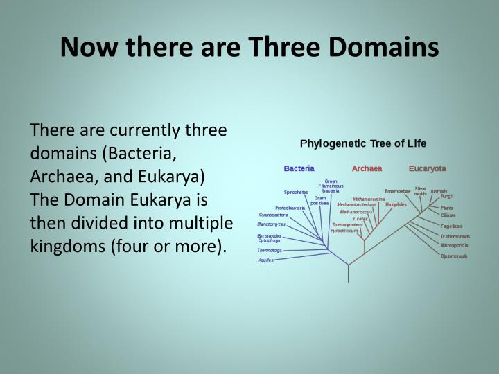 Now there are Three Domains
