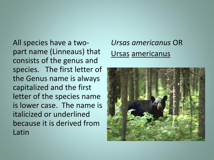 All species have a two-part name (