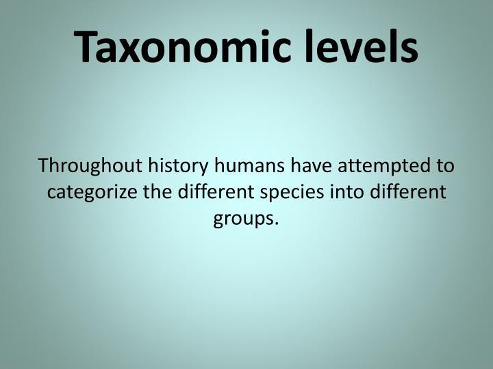 Taxonomic levels