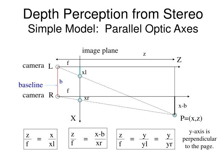Depth Perception from Stereo
