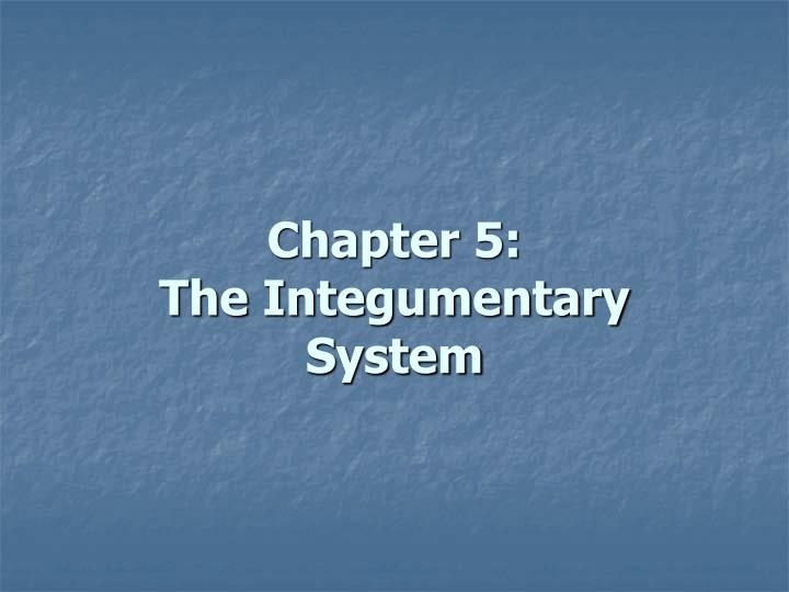 Chapter 5: