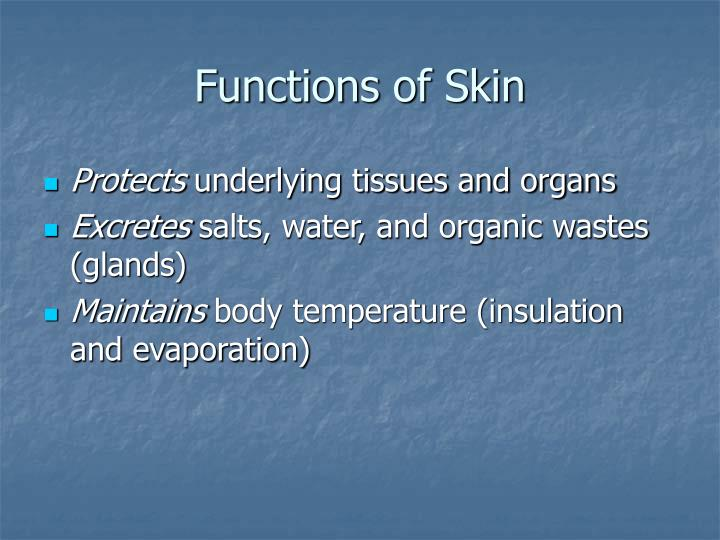 Functions of Skin