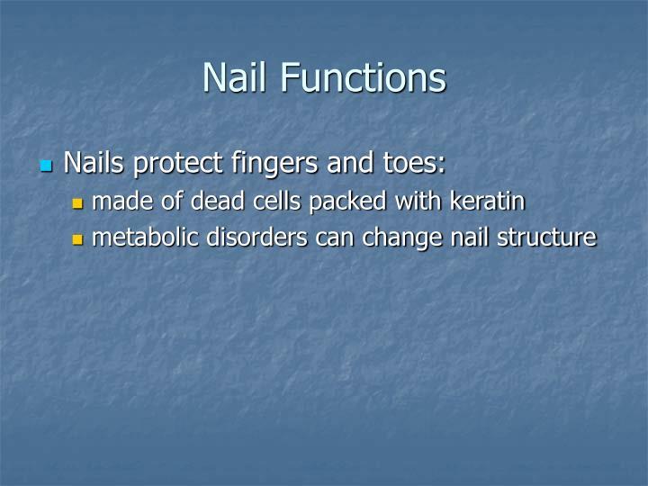 Nail Functions