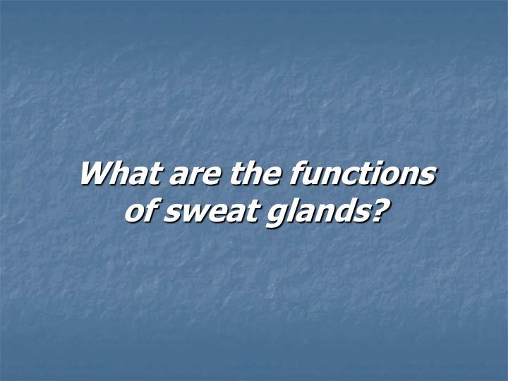 What are the functions