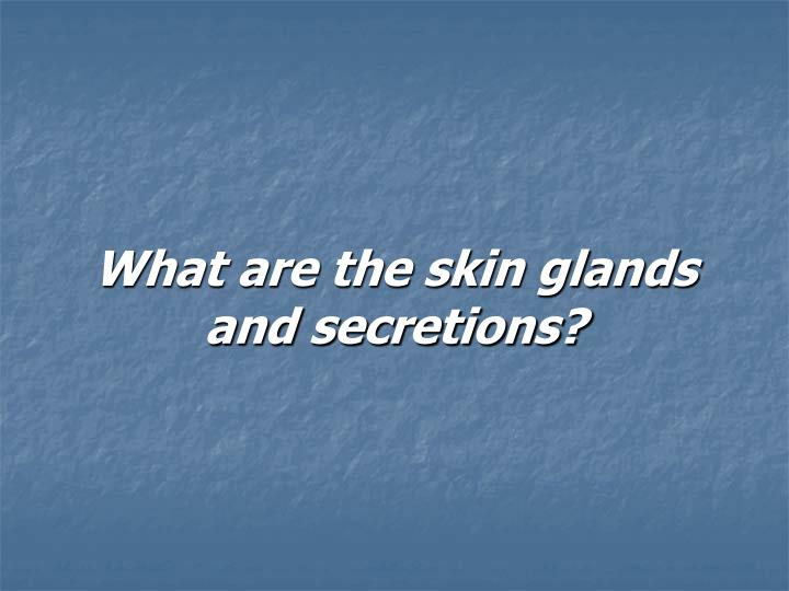 What are the skin glands