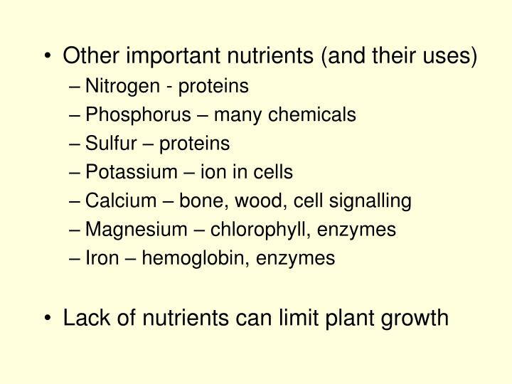 Other important nutrients (and their uses)