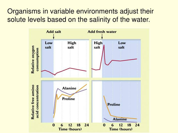 Organisms in variable environments adjust their solute levels based on the salinity of the water.