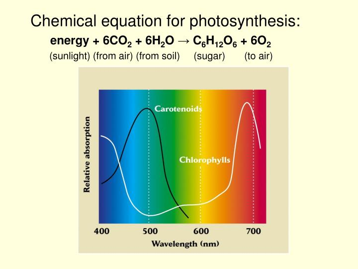 Chemical equation for photosynthesis:
