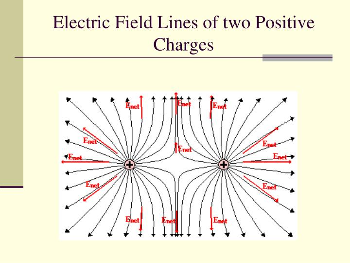 Electric Field Lines of two Positive Charges
