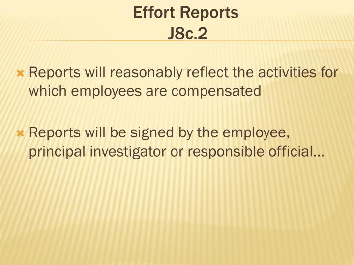 Effort Reports