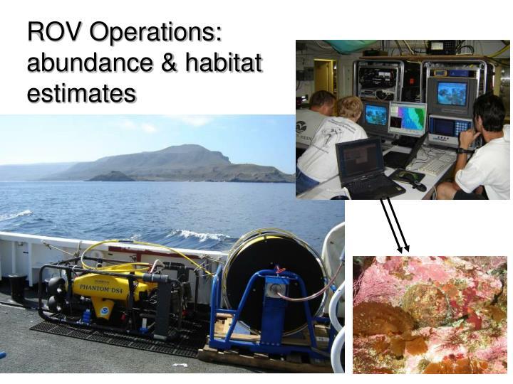 ROV Operations: abundance & habitat estimates