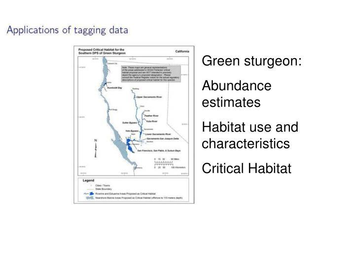 Green sturgeon: