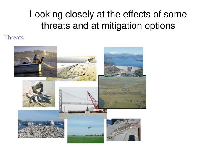 Looking closely at the effects of some threats and at mitigation options