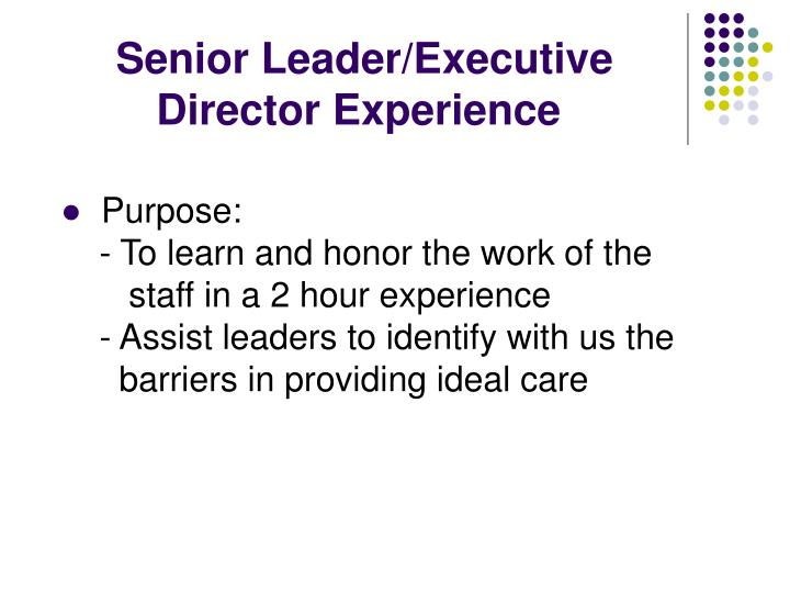 Senior Leader/Executive      Director Experience