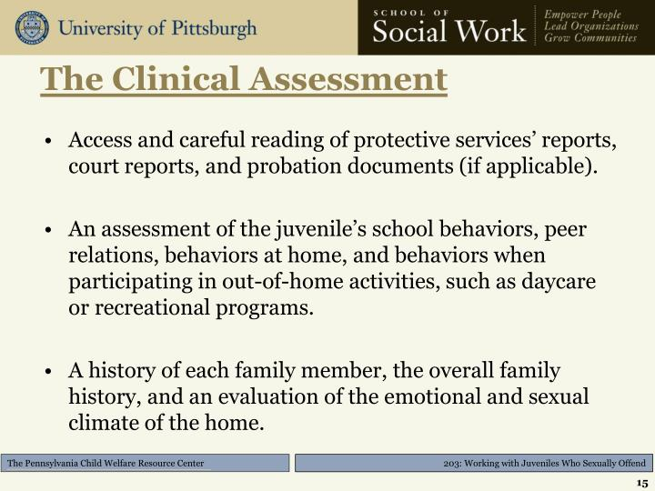 The Clinical Assessment