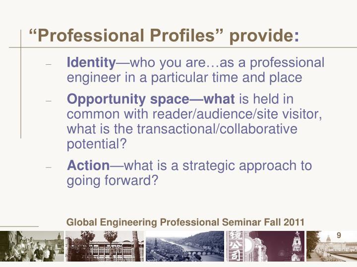 """""""Professional Profiles"""" provide"""