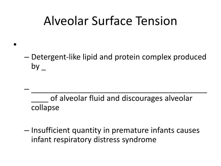 Alveolar Surface Tension