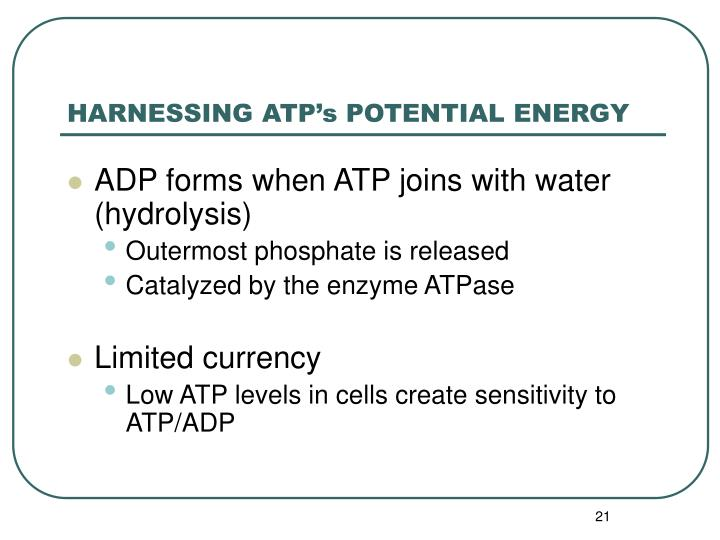 HARNESSING ATP's POTENTIAL ENERGY